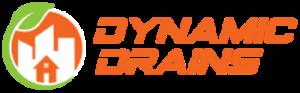 Dynamic Drains, MI 48176