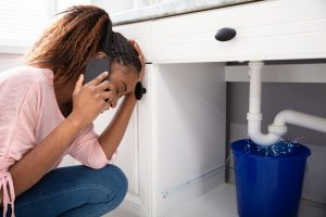 drain cleaning services in Milan, MI